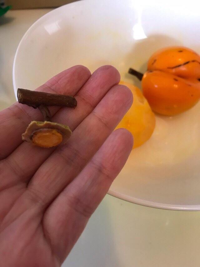 取れた渋柿の枝
