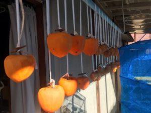 吊るした干し柿