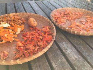 干し柿と皮と軸と枝の取れた渋柿