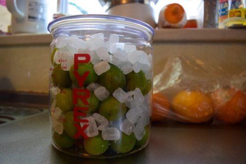 梅と氷砂糖の入った瓶と蓋