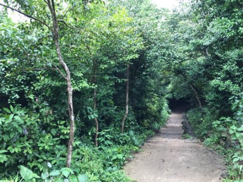 石岳展望台までの道のり