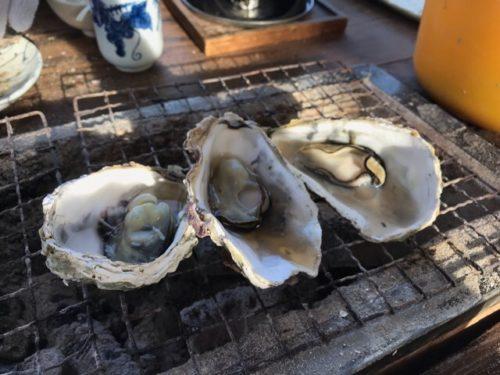 焼き牡蠣の再加熱