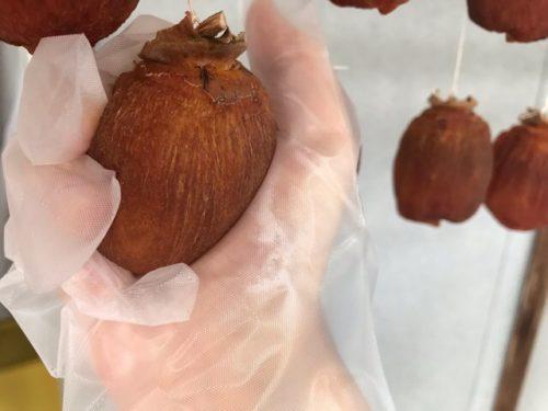 干し柿を揉む